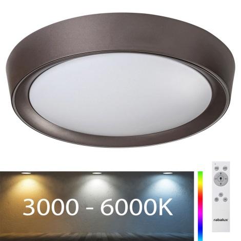 Rabalux - LED RGB Reguliuojamas lubinis šviestuvas LED/24W/230V + VP 3000-6000K